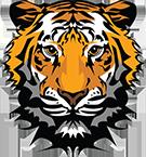 Hayesville Elementary School Logo